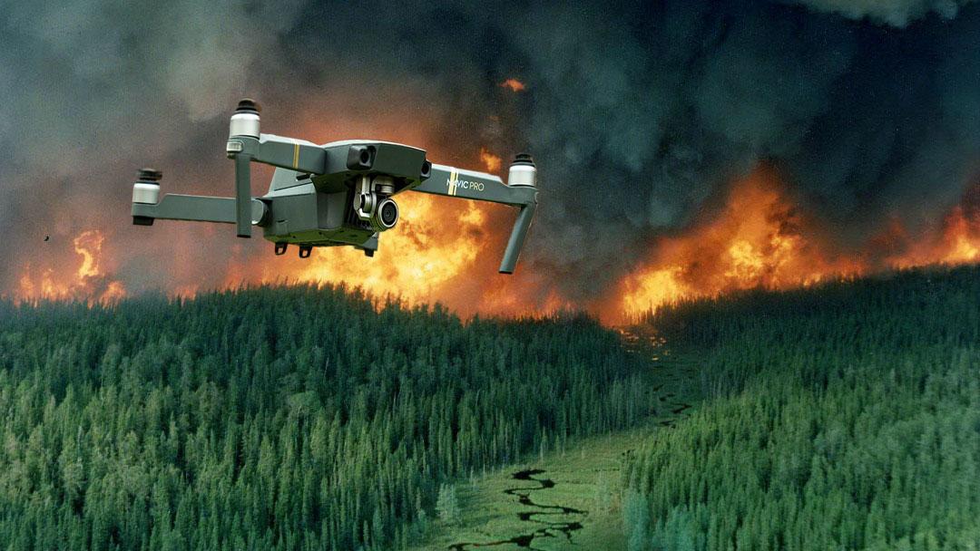 lasy dron ppoz