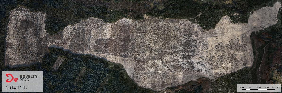 Ortofotomapa Pustyni Błędowskiej dronem